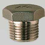 SS 347H Threaded Plug