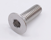 Stainless Steel Counter sunk Bolt