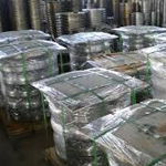 Alloy 20 Flanges Packing
