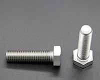 Titanium Hex Head Bolt/Nut